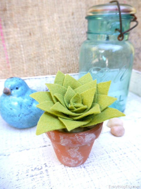 DIY-Succulent-by-Kim-Layton-1