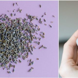 DIY Lavender Dryer Bags | Create dryer bags with dried lavender for fresh smelling lavender! Easy DIY Craft idea. Click the photo for the step by step tutorial.