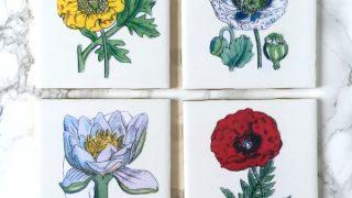 DIY Botanical Coasters