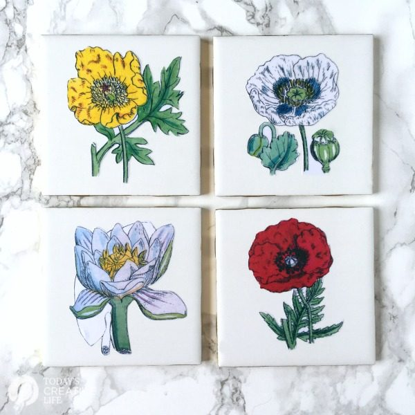DIY Botanical Coasters | Make your own botanical coasters with ceramic tiles and a little mod podge! Follow my step by step instructions for how to decoupage. See the tutorial on TodaysCreativeLife.com
