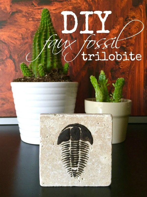 Diy Trilobite Fossils Today S Creative Life