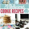 Everyone loves cookies! I've collected 20 Delicious Cookie Recipes from my site and a few others that will make your mouth water.