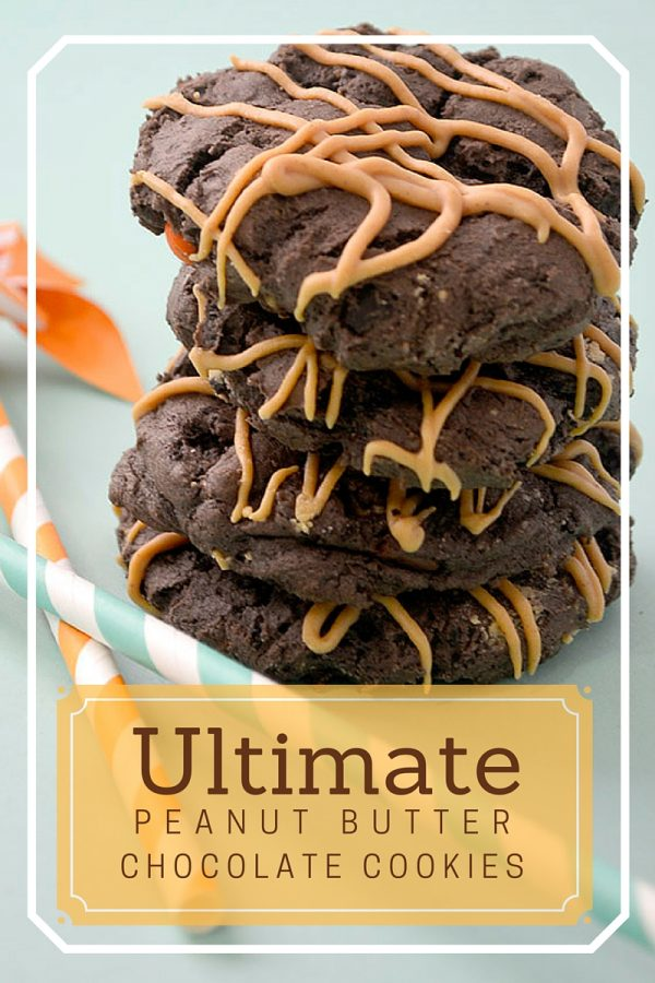 Chocolate Peanut Butter Cookies  The combination of chocolate and peanut butter makes me want to flip cartwheels! These Chocolate Peanut Butter Cookies have my name written ALL over them! Shared by Pink Cake Plate for Today's Creative Life.