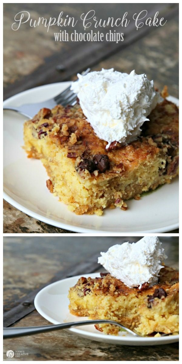 Pumpkin Crunch Cake with Chocolate Chips | This is a fall classic! Maybe you call it Pumpkin dump cake? So easy to make, and full of that pumpkin pie flavor! Click the photo for the recipe. Today's Creative Life