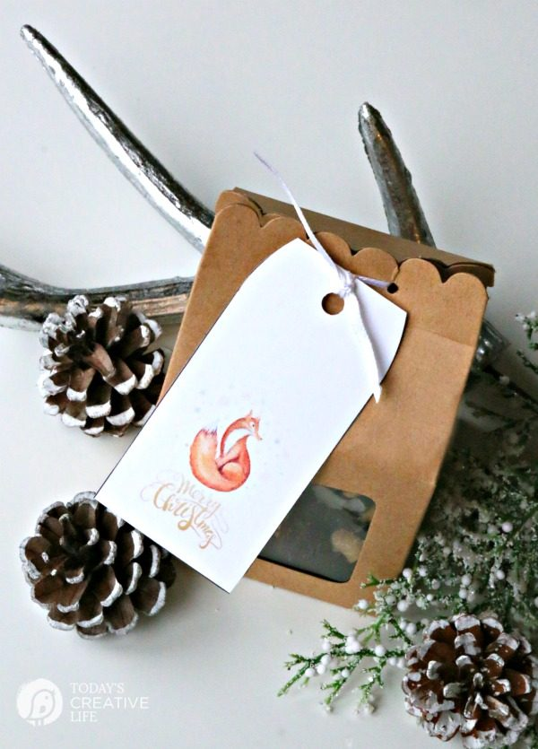 Dark Chocolate Fruit and Nut Bites | Easy holiday gifts from the kitchen. Great for neighbor gifts or to have on hand for last minute gift giving. Free Christmas tag found on TodaysCreativeLife.com