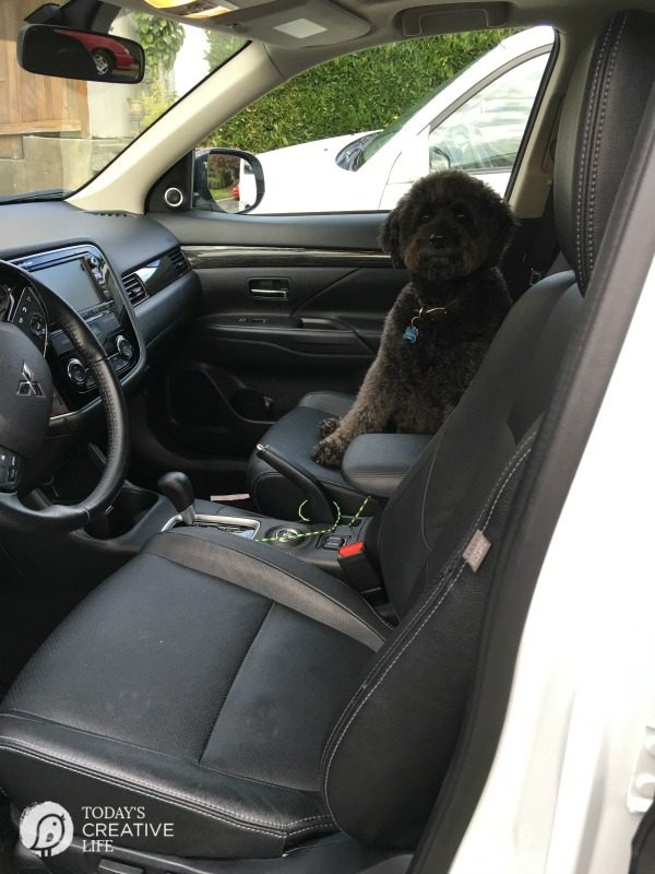 Mitsubishi 2016 Outlander SUV   Lots of room for hauling!   Pet friendly with leather interior.