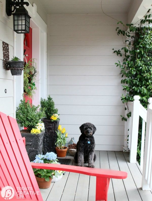 Front Porch Ideas | Small front porch simple decorating ideas for spring. TodaysCreativeLife.com