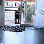 Best Wood Floor Cleaner Non-Toxic