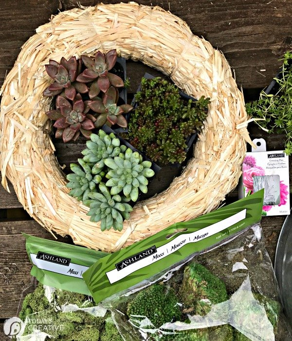 Supplies needed for making a succulent wreath | Find the tutorial on TodaysCreativeLife.com