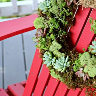 Succulent Wreath   How to make a living succulent wreath   DIY Moss and Succulent Wreath   Easy to Make   Spring or Fall Wreath   Find the tutorial on TodaysCreativeLife.com