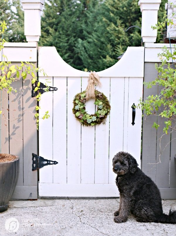 living succulent wreath hanging on a white entrance gate