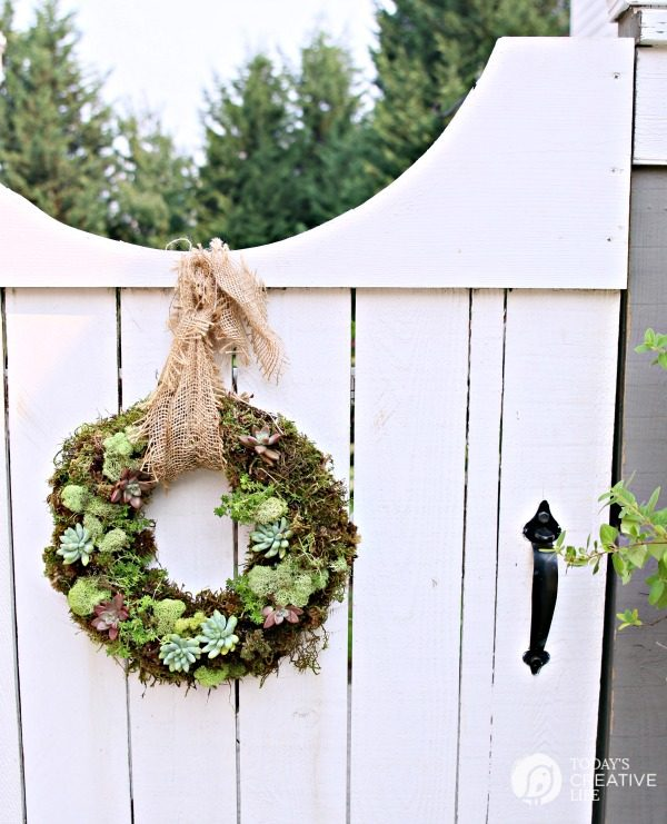 How to Make a Succulent Wreath | TodaysCreativeLife.com