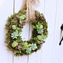 Succulent Wreath  {How to Make}