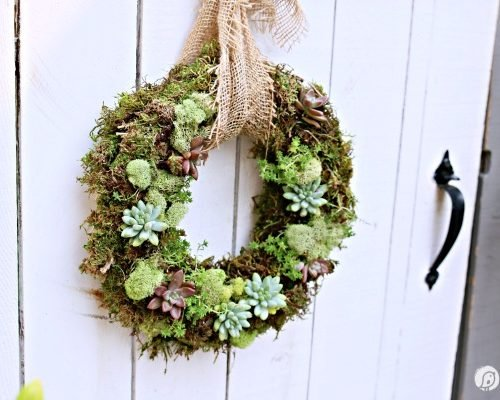 living succulent wreath on a white fence gate