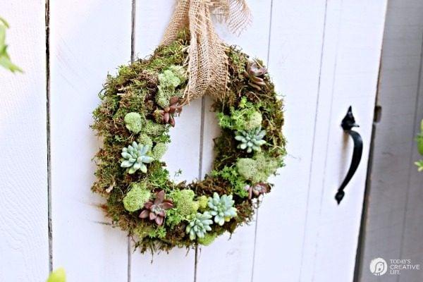 Succulent Wreath Diy Today S Creative Life