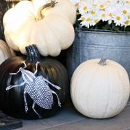 Creative Pumpkin Decorating Ideas | Creepy decoupaged insects for no carve pumpkin ideas | TodaysCreativeLife.com