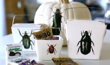 DIY Halloween Treat Box – Free Printables