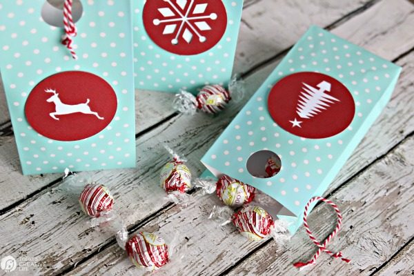 Easy DIY Gift bags | Holiday Gift Wrap