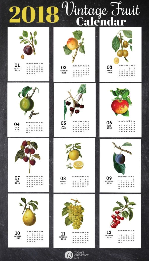 2018 Printable Calendar featuring Botanical Vintage Fruit | Free Calendar from TodaysCreativeLife.com