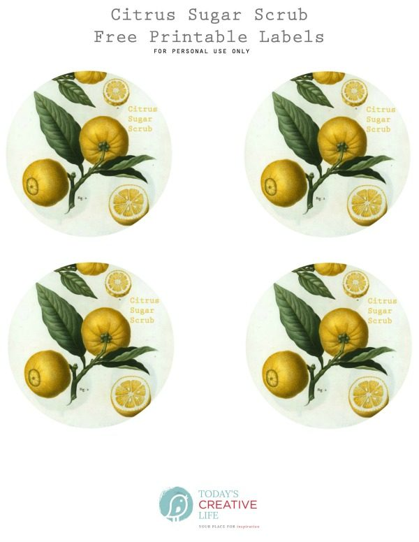 free printable labels for citrus sugar scrub gift containers