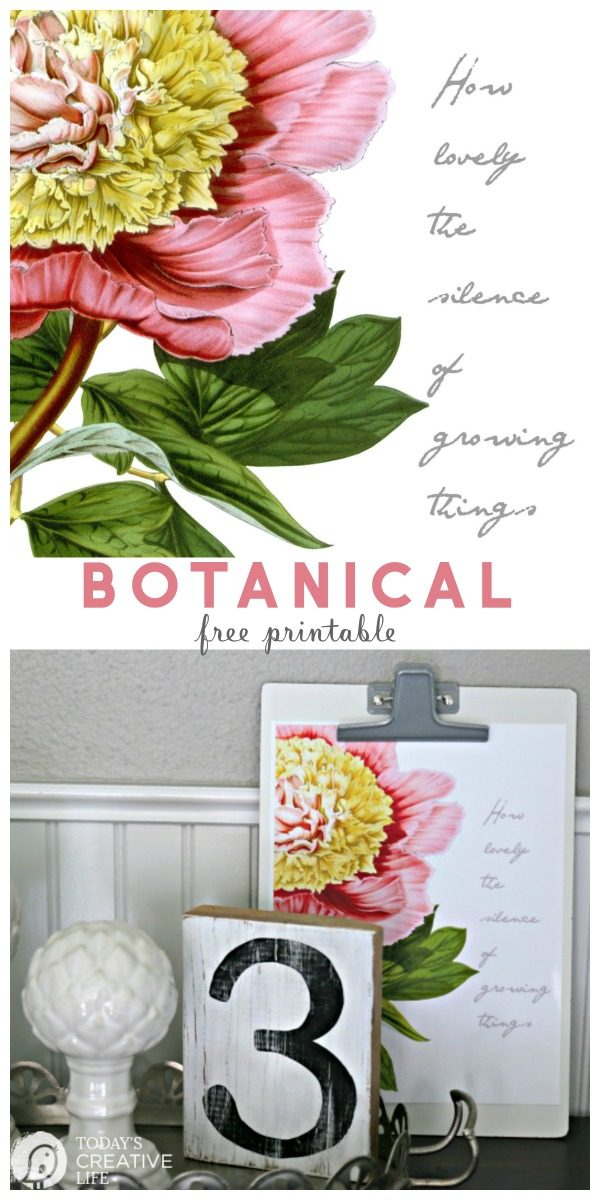 photograph regarding Free Printable Flowers called Cost-free Printable Botanical Wall Artwork Todays Inventive Lifetime