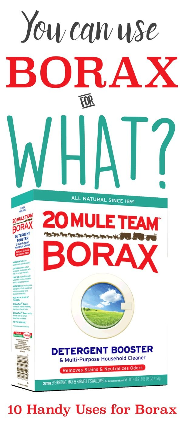 10 Handy Household Uses for Borax | Cleaning Hacks | Unclog your Drain | Deodorize your Carpets, Clean your hair brushes and combs | Use in your Garden | TodaysCreativeLife.com