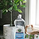 Toxin Free Cleaning – Detox your Home