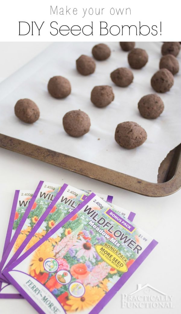 How to Make Garden Seed Bombs by Practically Functional