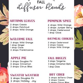 Fall Essential Oil Diffuser Blends | Autumn Diffuser Recipes | Fall Scents for your home | Non-toxic Air Freshener | TodaysCreativeLife.com