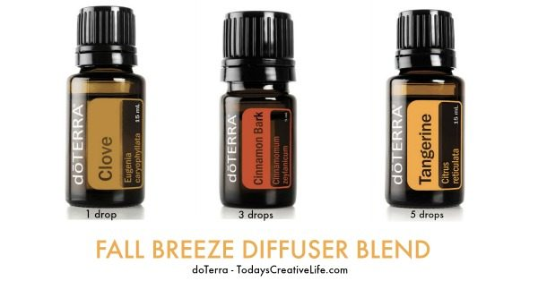 Essential Oil Diffuser Blend for Fall | TodaysCreativeLife.com