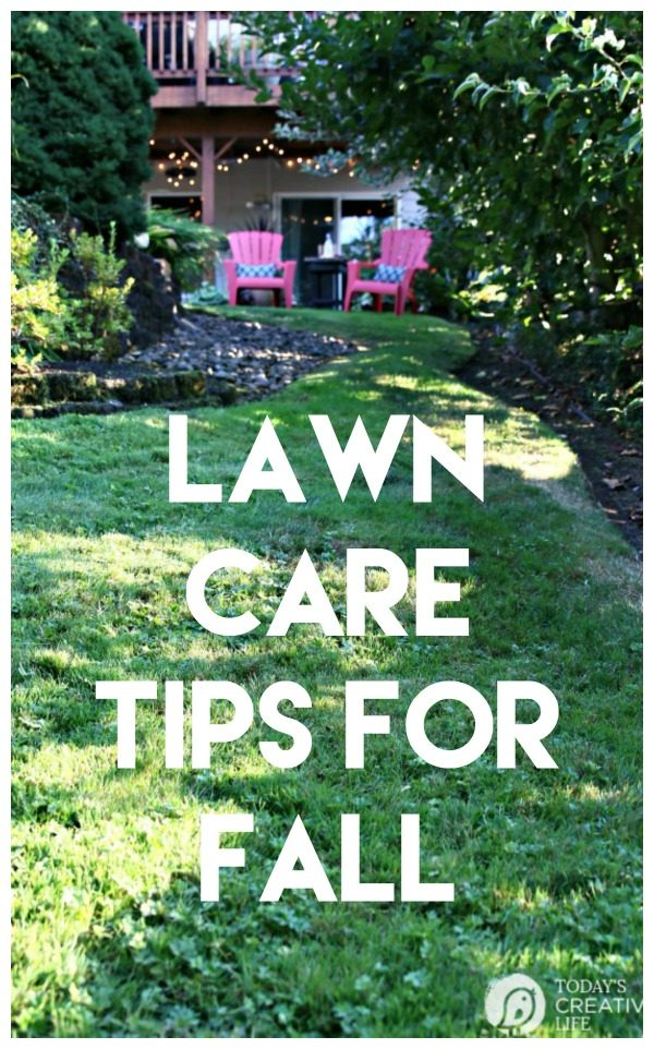 Simple Lawn Care for Fall | Lawn Care Tips for Autumn | What to do for your grass in the fall | Grass Seed USA | AD | Taking care of your yard for Fall | TodaysCreativeLife.com