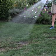 Watering newly seeded grass | TodaysCreativeLife.com