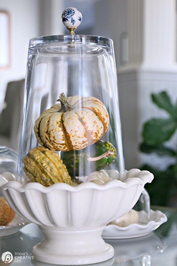 Simple Fall Table Decor | Easy Centerpiece Ideas | DIY | TodaysCreativeLIfe.com
