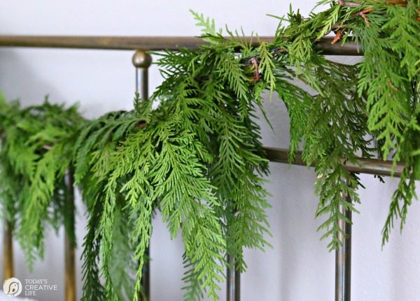 fresh bough of cedar garland