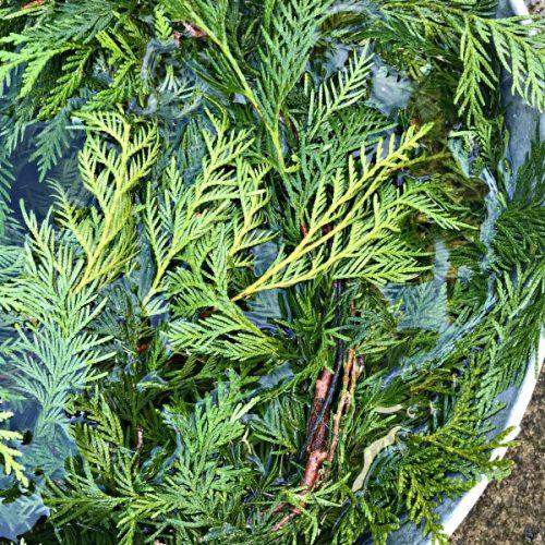 fresh cedar garland