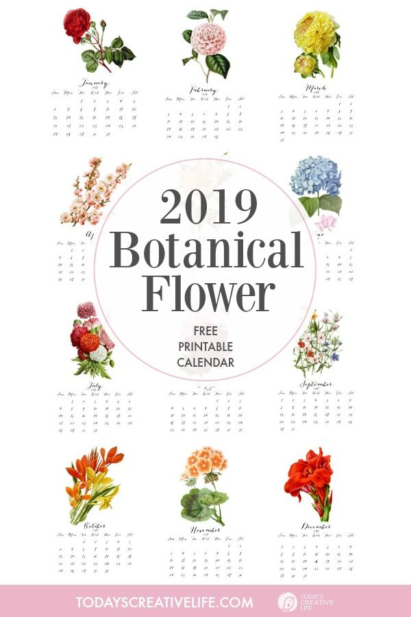 2019 Printable 2019 Botanical Flower Calendar | Free Printable Calendar | Vintage Flower Botanicals | Month to month printable calendar | Monthly | Find it on TodaysCreativeLife.com