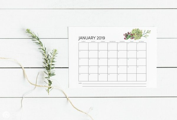 Free Printable 2019 Calendar - Month to month | TodaysCreativelife.com