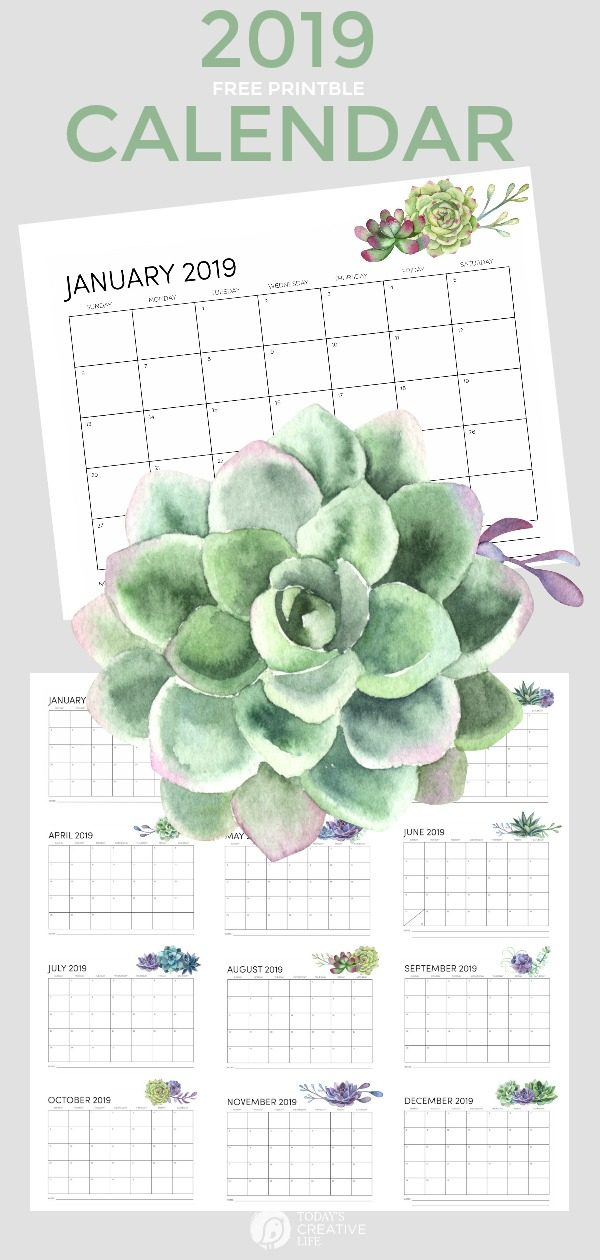 2019 Free Printable Calendar | Succulents | Minimalist Style | Decorative Month to Month Calendar | TodaysCreativeLife.com