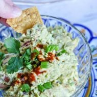 Chipotle Pepper Guacamole Dip Recipe