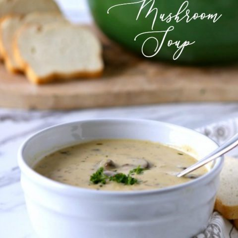 Homemade Cream Of Mushroom Soup Recipe Today S Creative Life