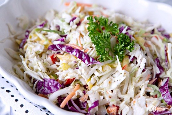 Zesty Coleslaw Salad Recipe