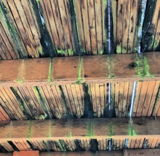 How to know when to replace a deck