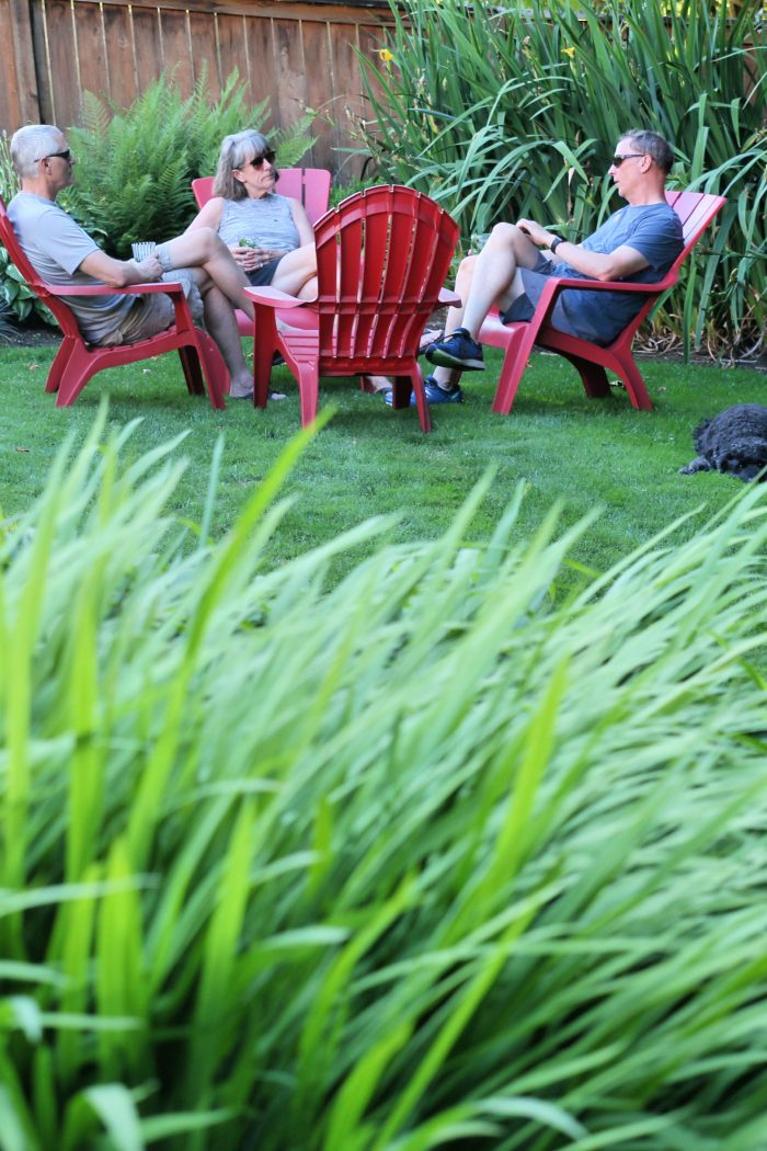 Lawn Care Tips for Summer