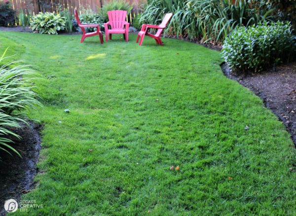 Summer Lawn Ideas | TodaysCreativeLife.com