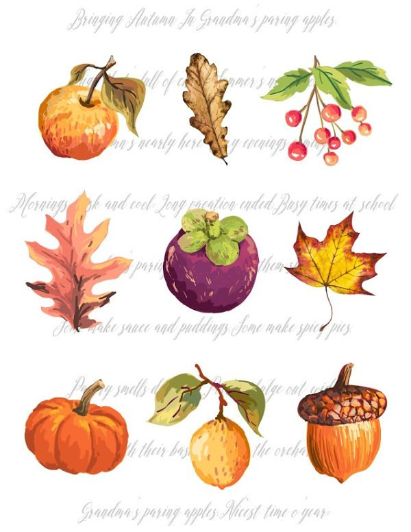 Fall clip art on paper