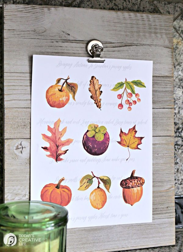 Autumn clip art on paper for display
