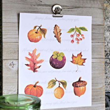 Autumn clip art on paper