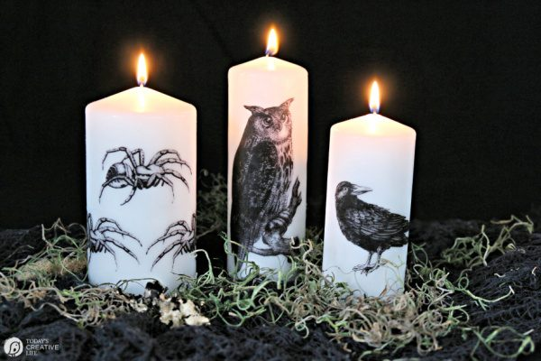 3 candles with halloween images