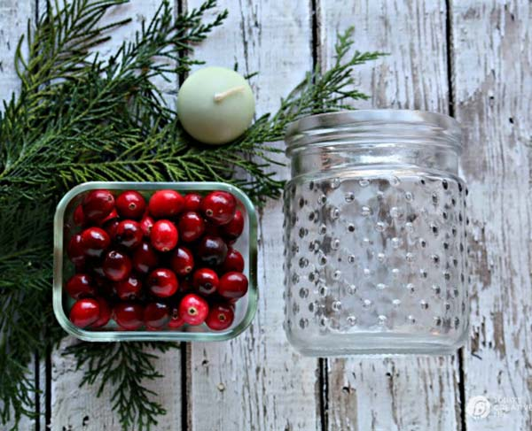 Supplies to make Cedar & Cranberry luminaries