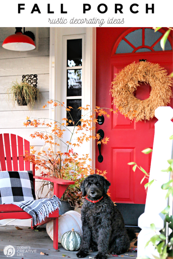 Fall porch with red door, fall leaves and black dog.
